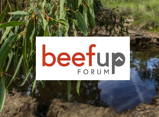 beefup forum